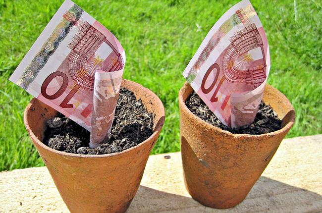украинские инвестиции в латвии, внж в латвии